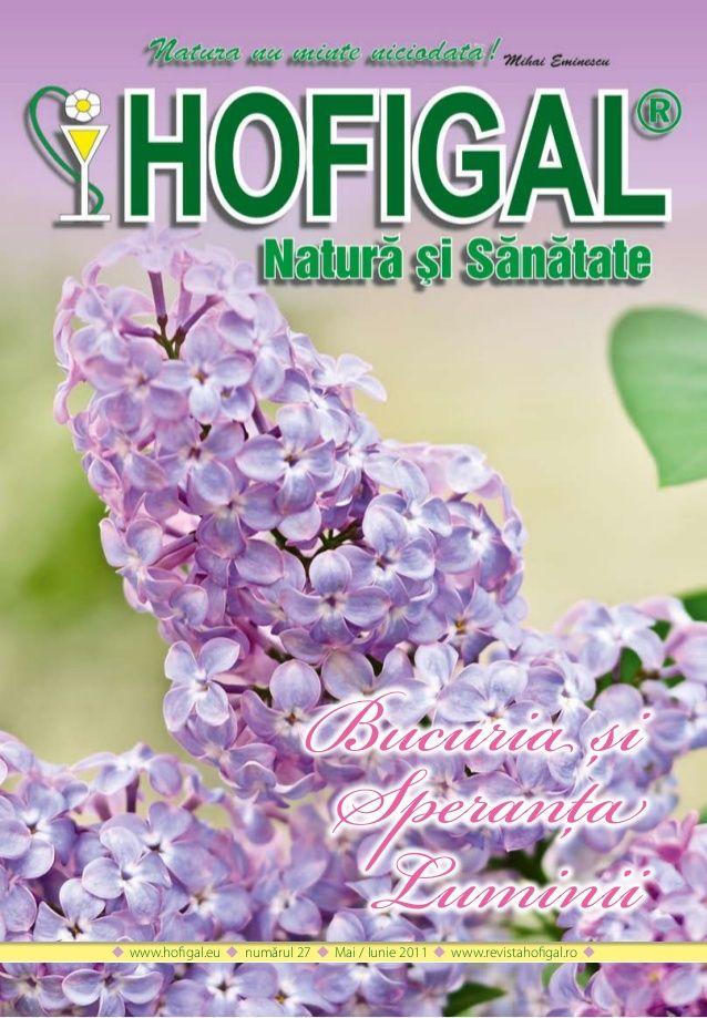 Revista hofigal nr_27