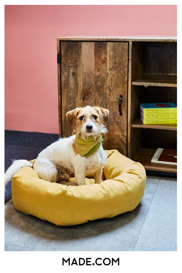 Kysler Grosses Haustierbett Senfgelb Pet Beds Large Pet Beds Pet Sofa