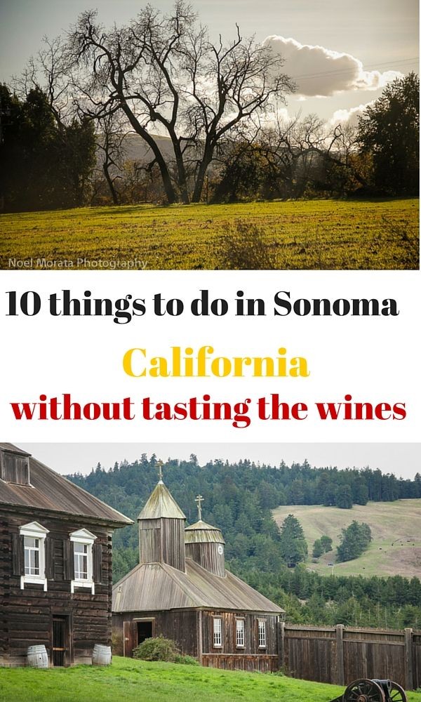 10 wonderful places and areas to visit around Sonoma wine country in California, that don't require you to taste any of the wines. These are fun places to discover, attractions and towns to visit around the county from the ocean areas to the foothills http://travelphotodiscovery.com/10-things-to-do-in-sonoma-without-tasting-the-wines/ #visitingsonoma #sonoma #sonomaattractions #sonomatowns