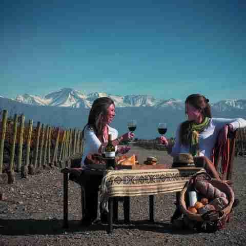 Fotos de Mendoza - Galería Vino