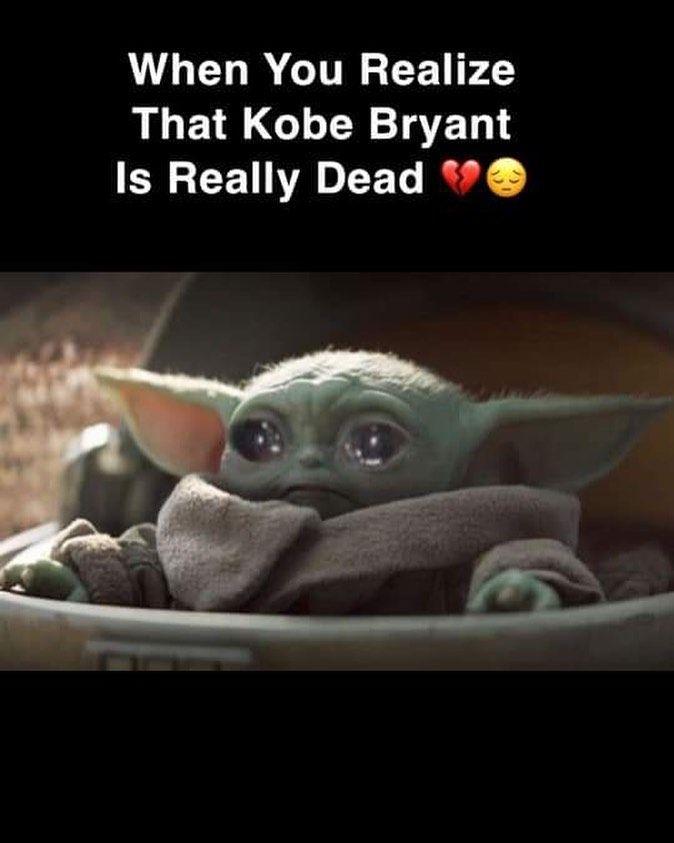 Babyyoda Yoda Starwars Memes Cute Starwarsmemes Babyyodamemes Yodamemes Lukas Lukasfilms Disney Star Wars M Funny Memes Star Wars Memes Yoda Meme