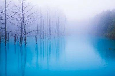 北海道 : 北海道美瑛町の白金温泉近くにある、通称「青い池」 | Sumally (サマリー) | Beautiful foggy reflection foto.|