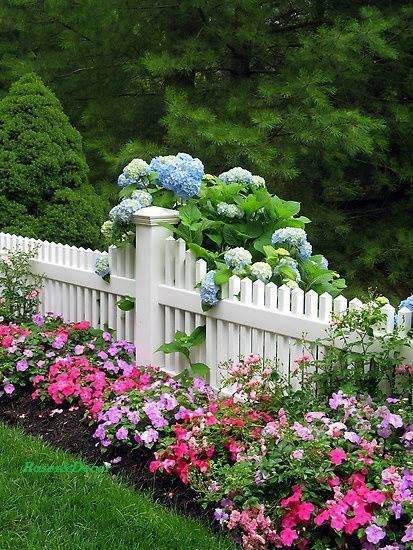 fence with plantings