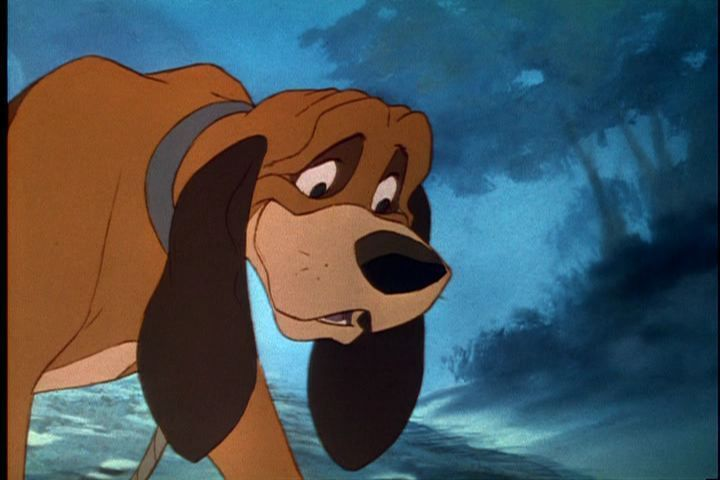 Name Of Older Dog In Fox And The Hound