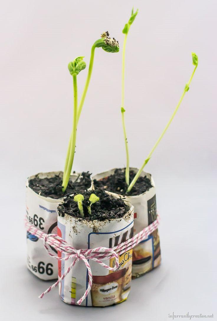 Diy Biodegradable Plant P*T Maker Plants Biodegradable 400 x 300