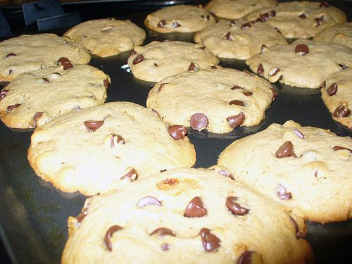 Vegan chewy chocolate chip cookies.  Have to make these.  Thank you Jessica!: Chocolate Chips, Dogs Birthday Cakes, Chewy Chocolates, Chocolates Chips Cookies, Birthday Cake Recipes, Cookies Recipes, Birthday Cakes Recipes, Chocolate Chip Cookies, Vegans Cookies