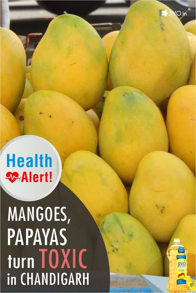 #HealthAlert  Mangoes, papayas turn toxic in Chandigarh  UT health department cracked down on the use of banned chemical calcium carbide for artifically ripening fruits at wholesale godowns in the Sector 26 grain market on Saturday, carrying out early-morning raids that started from 7am and continued for three hours.