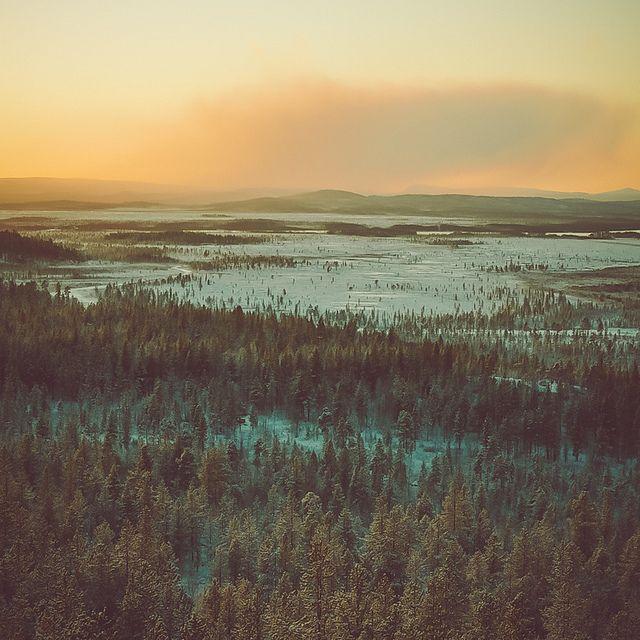 Frozen sunshine by Go.70°North, via Flickr