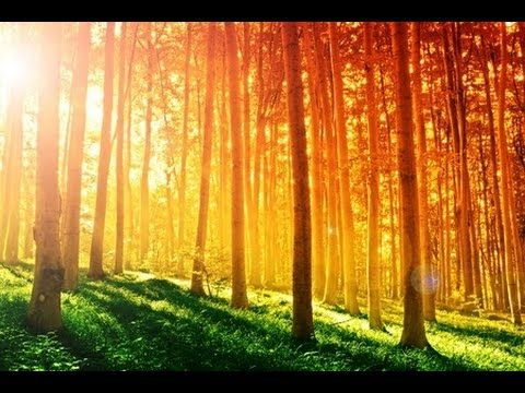 3 Hour Relaxing Music: New Age Music; Instrumental Music; Relaxation Mus...