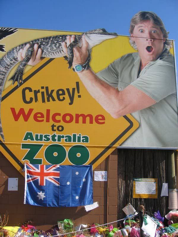 Australia Zoo..Some time I will get to go there, even though my dream of meeting him is gone.  :(
