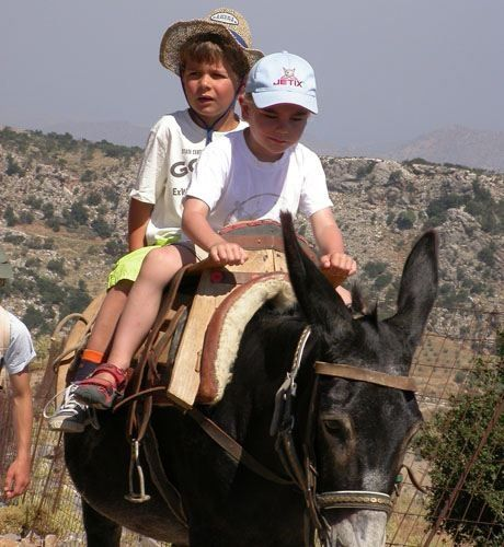 You can also live the authentic Cretan life!