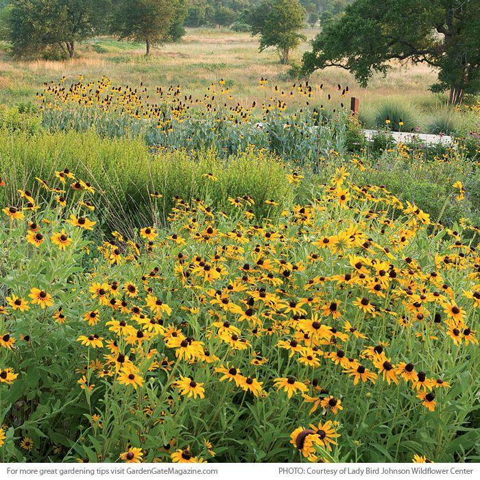 4 of our favorite public gardens | Garden Gate eNotes