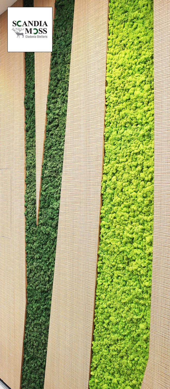 Scandia Moss SM Panel - Wall Embed.  Maintenance Free Green Wall solution.  Fire Safe (NS-EN ISO 11925-2 Certified), 100% Organic, Deodorizing & Harmful Substance Removal (JEM 1467 Certified).