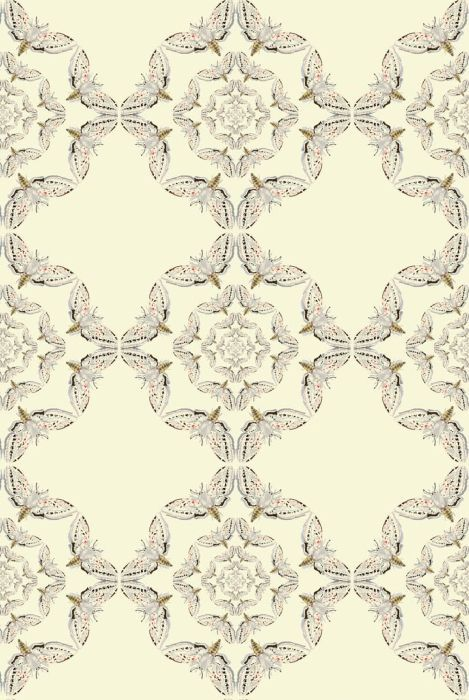 Timorous Beasties Wallcoverings - White Moth Circle