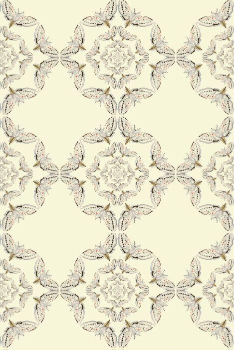 Timorous Beasties Wallcoverings - White Moth Circle