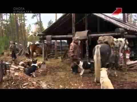 Охота на лося По Якутии с Александром Борисовым
