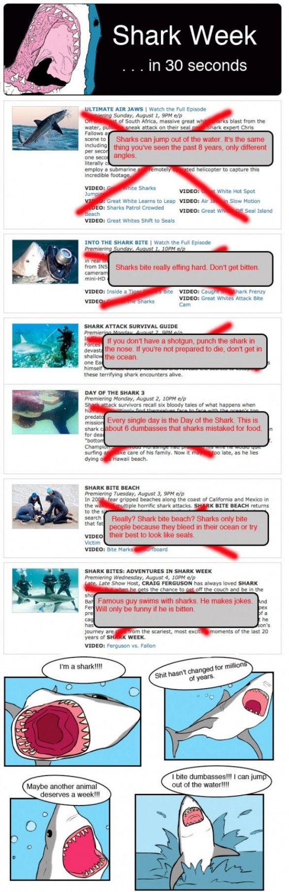 best 25 shark week humor ideas on pinterest shark humor shark