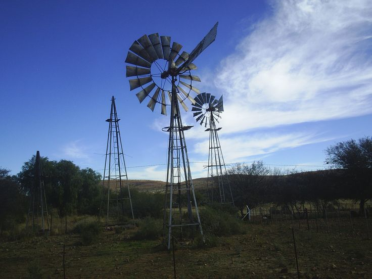 Die Windpompe