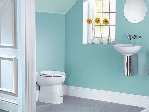 Upflush Toilet System Lowes