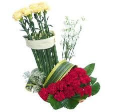 Show your mixed feeling for your friend by sending this basket of red and yellow carnations.