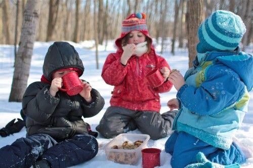 Snow PicnicSummer Picnic, Picnics Ideas, Hot Chocolate, Homemade Cookies, Families Traditional, Winter Picnics, Families Picnics, Christmas Holiday, Snow Picnics