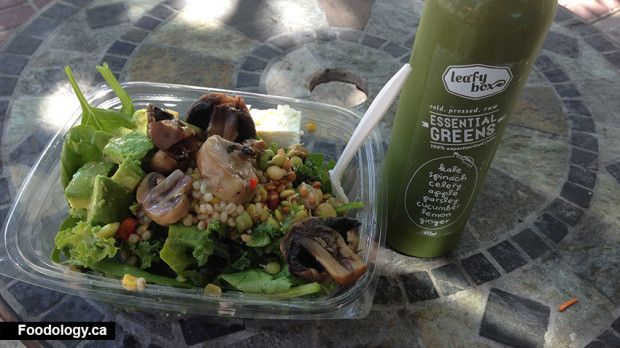 http://foodology.ca/wp-content/uploads/2013/09/leafybox-lunch-620x348.jpg