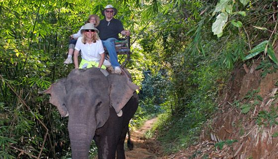 Thailand - cycling through culture and cuisine. An unforgettable experience without your bookstore travel guide!