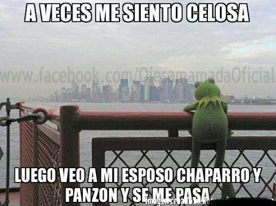 a56358fddf2f69f1f68f0500fb320949 rana rene meme spanish humor 111 best rana rene images on pinterest memes humour, funny stuff