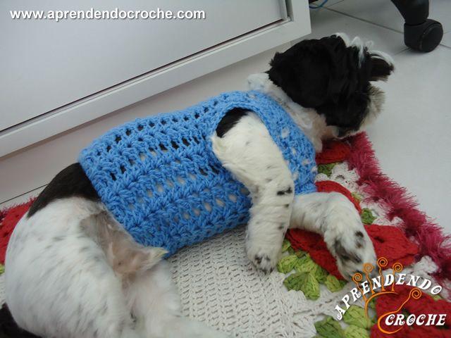 Roupinha de Crochê Cãozinho Fashion - Receita de Croche