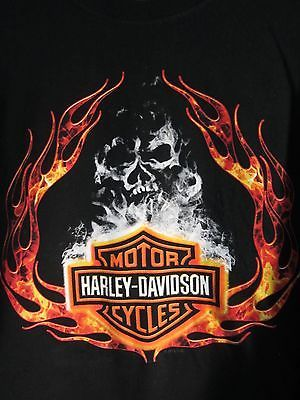 Image result for Skull Harley-Davidson pictures