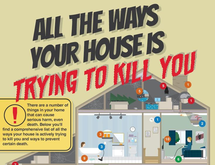 ABC Humane Wildlife put together an infographic with a comprehensive list of all the ways your house may be harming your health.