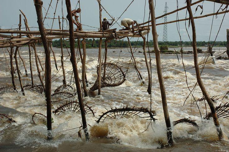 Fishing at the falls - Julien Harneis - February 28, 2007 - 1 - Fishing weir - Wikipedia, the free encyclopedia