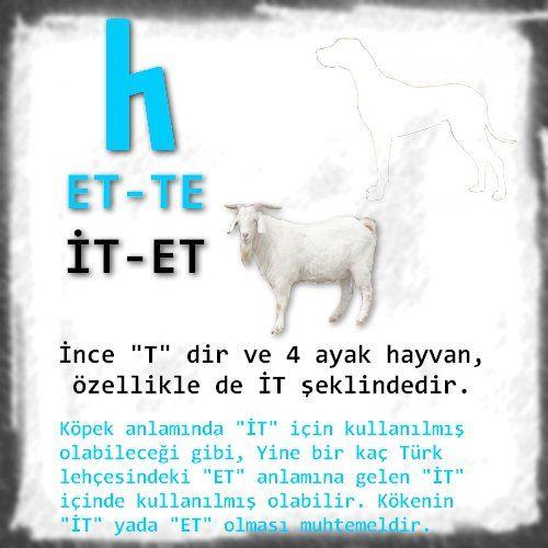 Türk Abecesi ve Tamga kökleri
