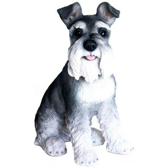 Tuin zwarte Schnauzer beeldje hondje 33 cm  Beeld zwart/witte Schnauzer hondje. Dit honden beeldje is een Schnauzer en heeft een zwart witte kleur. Het is gemaakt van polystone en heeft een formaat van ongeveer 33 x 29 x 16 cm. Geschikt voor binnen en buiten.  EUR 54.95  Meer informatie