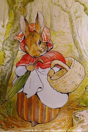 """"""" Madame Lapin prit son panier et son parapluie et s'en alla, à travers bois, chez le boulanger. Elle acheta une miche de pain bis et cinq petits pains aux raisins. """" ~ The Tale of Peter Rabbit"""