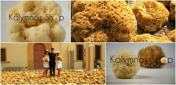 Greek natural Sponges from Kalymnos.