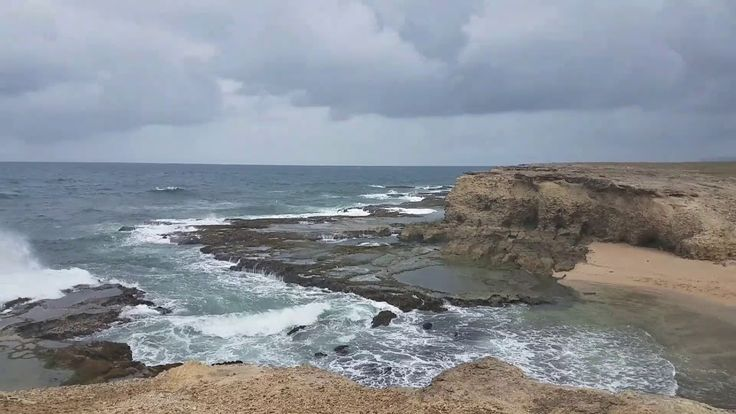 It's clear why Little Bay is a favourite tour stop.  This scenic spot features rugged cliffs, blow holes and a natural ocean pool.