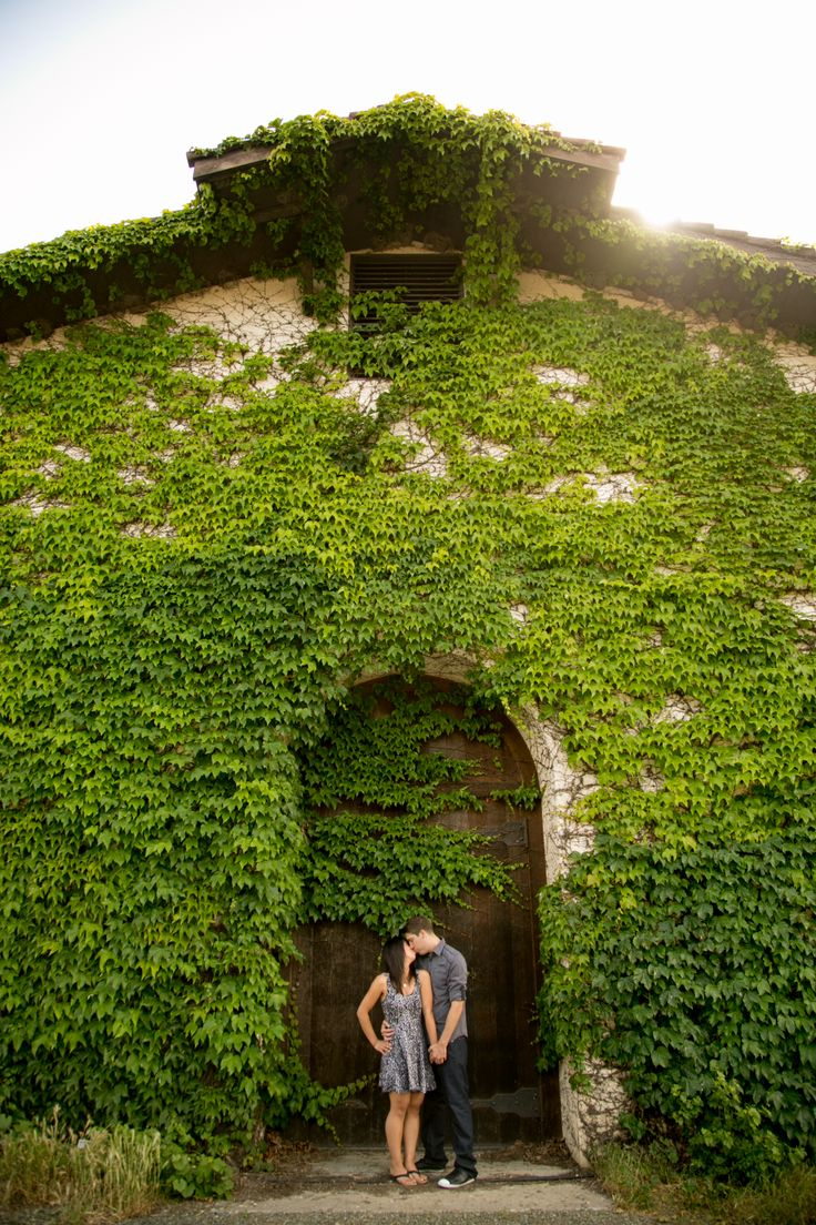 Engagement photos in Napa! Love the photos of them in the vineyards too. Link to the blog post here: http://www.bradypuryearblog.com/2014/05/napa-valley-engagement-session-raymond-michelle/