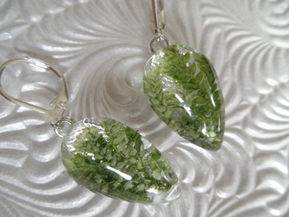 Perseverance-Lush Green Frosted Ferns Pressed by giftforallseasons