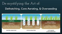 Stop by our latest blog: De-mystifying dethatching, core aerating, and overseeding! Oh the joys of Fall lawn care... http://tehandon.com/dethatch-core-aerate-and-overseed/
