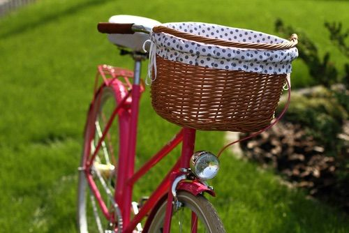 Egriders retro style bikes vintage bicycle handmade leather accessories raspberry dots lady