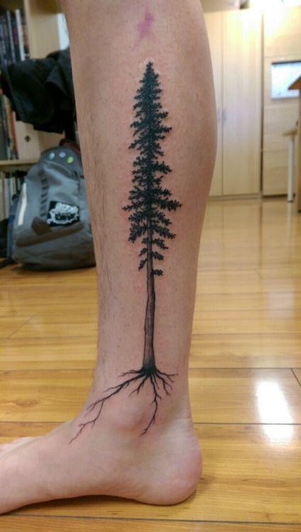 redwood tree tattoo | Tumblr