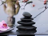 Feng Shui, The Gardens, Sacred Spaces, Zen Moments, Zen Shorts, Zen Relaxing, Zen States, Peace For, Zen Serenity