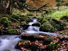 Vall de Torán, Camin Reiau