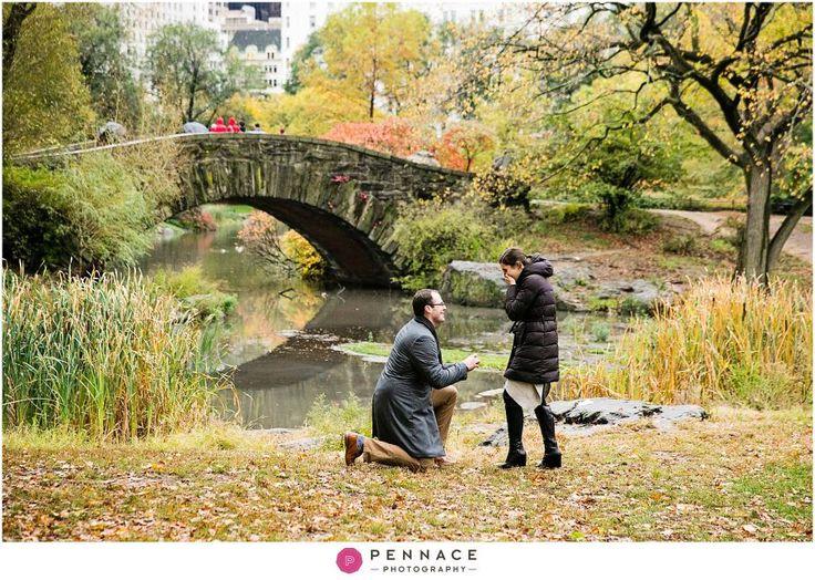 Central Park Proposal Photographer Marriage Proposals Pinterest
