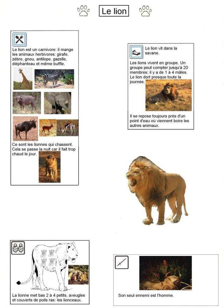 fhttp://www.gommeetgribouillages.fr/afrique/ Différents fiches documentaires sur les animaux d'Afrique : lion, buffle, rhino, éléphant, hyène ...
