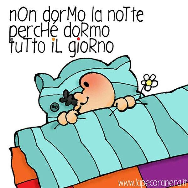 non dormo la notte perché dormo tutto il giorno