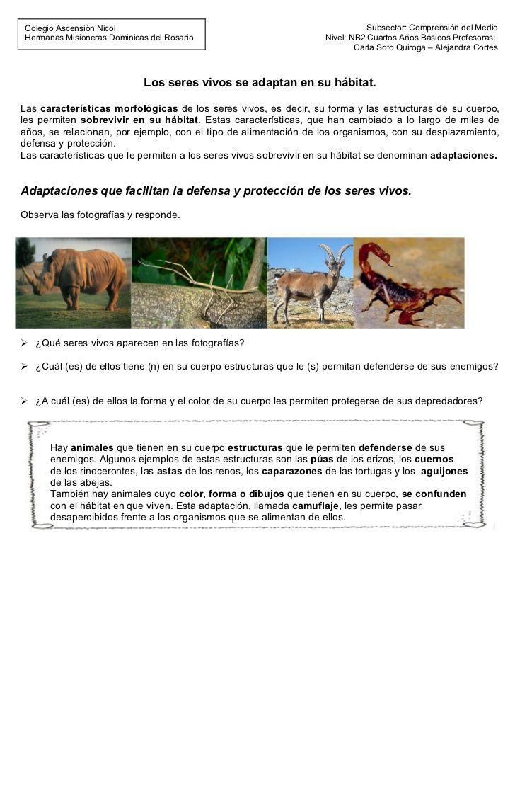 Colegio Ascensión Nicol                                                      Subsector: Comprensión del Medio  Hermanas Mi...