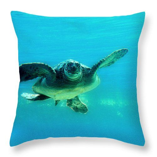 Green Submarine Throw Pillow featuring the photograph Green Submarine by Micki Findlay