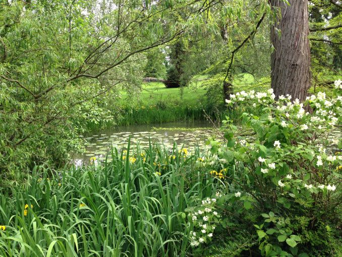 Pond side planting at Woburn Abbey